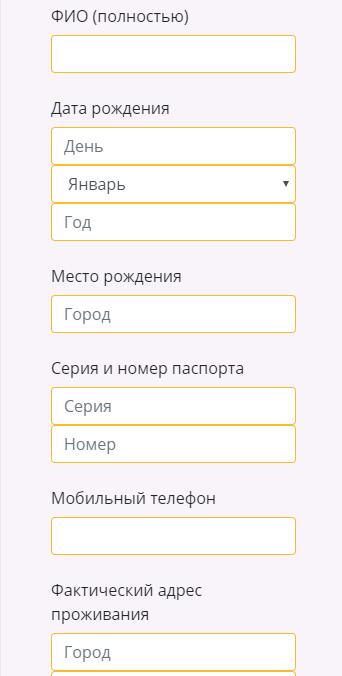 Указание данных заемщика при оформлении займа в финтерра.рф